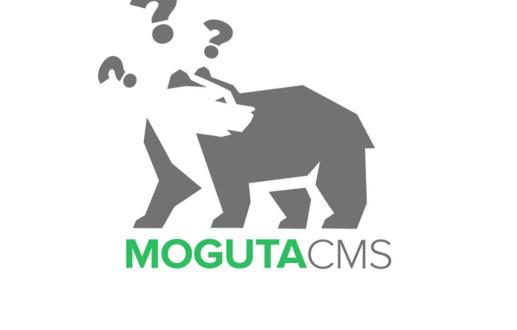 Как мы прогадали со сроками и наткнулись на кривые плагины — пилотный проект для интернет-магазина детского питания на CMS Moguta
